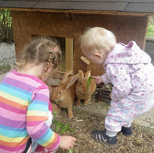 Die Kinder spielen mit Hasen